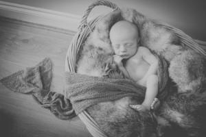 newborn photography gold coast