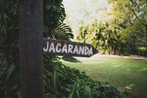 Danielle & Chris xx Married - Bundaleer Rainforest Gardens, Brisbane  69