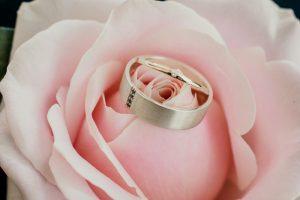 Emma & Brenden Married xx Trove Studio, Tanawha-Sunshine Coast xx  79
